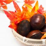 栗の茹で方と簡単な皮のむき方は?保存方法と簡単レシピ