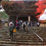 高雄(神護寺)【京都】の紅葉おすすめは?見頃はいつ?ポイントは?