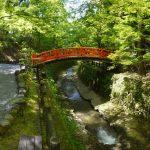 北野天満宮【京都】の紅葉おすすめは?見頃はいつ?ポイントは?
